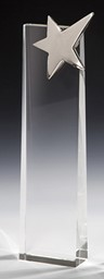 Bild von Silver Star Crystal Tower Award